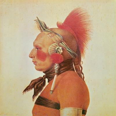 An Osage Warrior, C.1804
