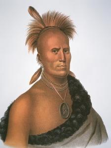 Chief Sharitarish, 1821 (Colour Litho) by Charles Bird King