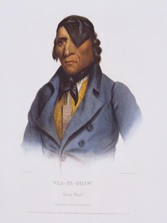 Waa-Pa-Shaaw from 'The Indian Tribes of North America'