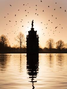 Birds Flock Above Diana Fountain by Charles Bowman