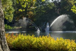 Kew Autumn Lake 1 by Charles Bowman