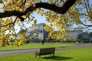 Kew Gardens Palm House 1 by Charles Bowman