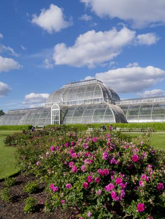Kew Palm House by Charles Bowman