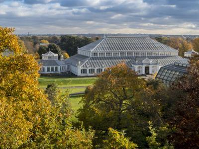 Kew Temperate House 1 by Charles Bowman