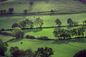 Landscape Cumbria by Charles Bowman
