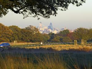 London Skyline from Richmond Park, London, England, United Kingdom by Charles Bowman