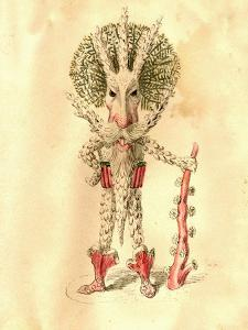 Coral Polyp 1873 'Missing Links' Parade Costume Design by Charles Briton