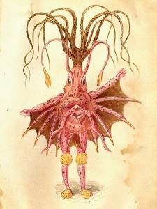Sea Nettle 1873 'Missing Links' Parade Costume Design by Charles Briton