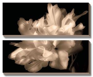 Double Dappled I by Charles Britt