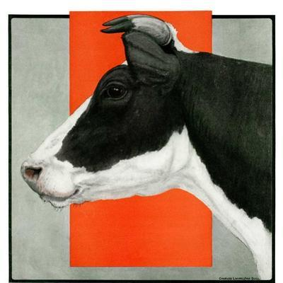 """""""Black and White Cow in Profile,""""July 21, 1923 by Charles Bull"""