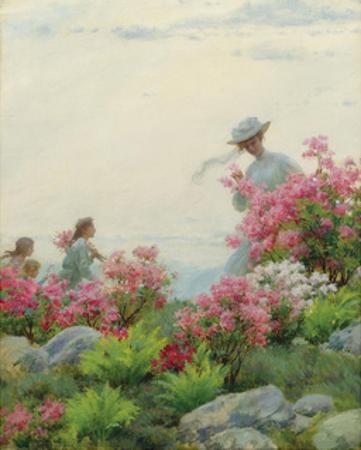 Among the Wild Azaleas