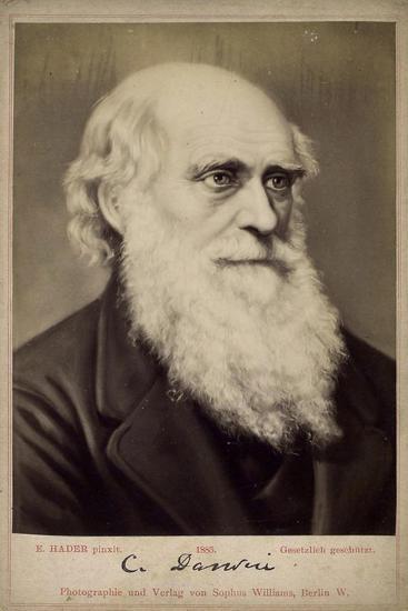 Charles Darwin, British Naturalist, C1860S-C1870S-Ernst Hader-Giclee Print