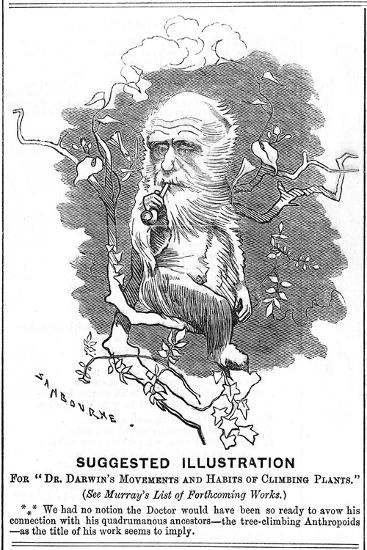 Charles Darwin, English Naturalist, 1875-Edward Linley Sambourne-Giclee Print