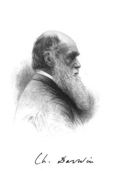 Charles Darwin, English naturalist, c1880. Artist: Unknown-Unknown-Giclee Print