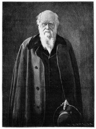 https://imgc.artprintimages.com/img/print/charles-darwin-renowned-naturalist-and-thinker_u-l-ptm5rj0.jpg?p=0