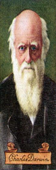Charles Darwin, taken from a series of cigarette cards, 1935. Artist: Unknown-Unknown-Giclee Print