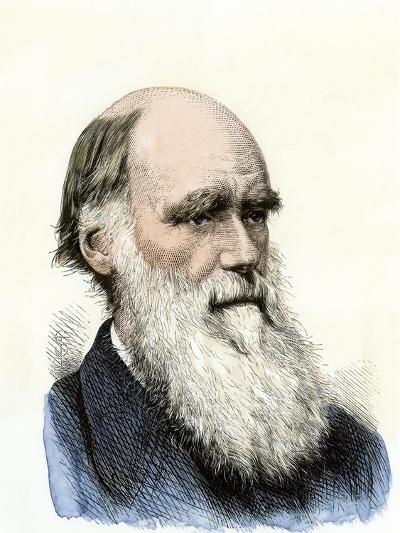 Charles Darwin--Giclee Print