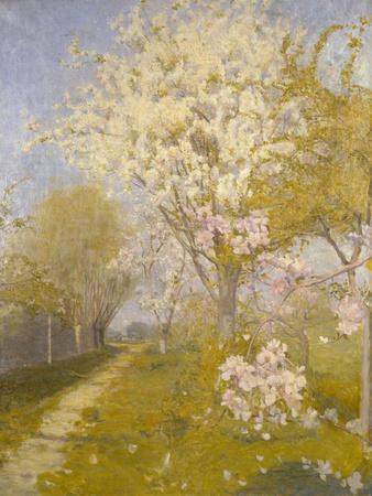 Apple Blossom at Dennemont, 1893