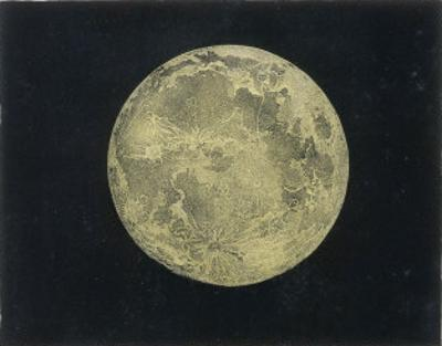 The Moon at the Full by Charles F. Bunt