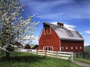 Barn, Ellensburg, Washington, USA by Charles Gurche