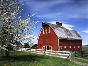 Barn, Ellensburg, Washington, USA by Charles Gurche