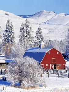 Barns in winter, Methow Valley, Washington, USA by Charles Gurche