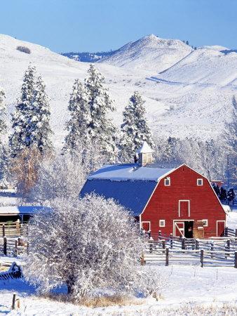 Barns in winter, Methow Valley, Washington, USA