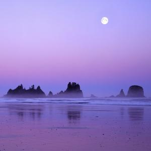 Full moon above seastacks, Olympic National Park, Washington, USA by Charles Gurche