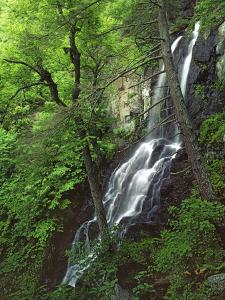 Lewis Falls, Shenandoah National Park, Virginia, USA by Charles Gurche