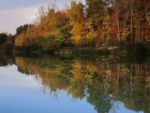Longford Lake, Fairfax County, Virginia, USA by Charles Gurche