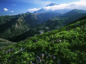Mount St. Helens National Volcanic Monument, Washington, USA by Charles Gurche