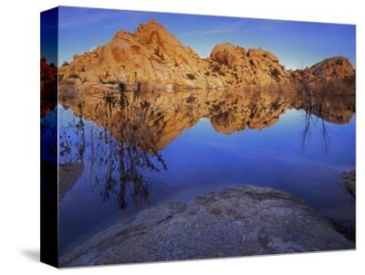 Pond in Joshua Tree National Park, Barker Tank, California, USA