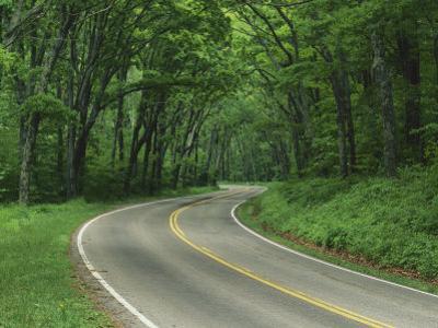 Skyline Drive, Shenandoah National Park, Virginia, USA by Charles Gurche