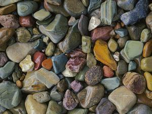 Stones Along St Mary Lake, Glacier National Park, Montana, USA by Charles Gurche