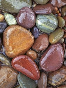 Stones, Clark Fork River, Lolo National Forest Montana, USA by Charles Gurche