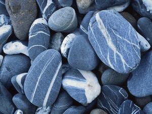 Stones, Lake Champlain, Vermont, USA by Charles Gurche