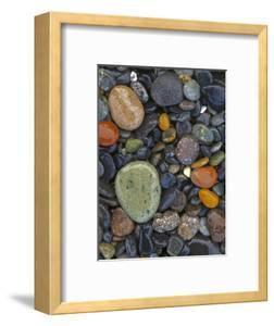 Stones, Lopez Island, Agate Beach County, Washington, USA by Charles Gurche