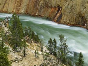 The Yellowstone River, Yellowstone National Park, Wyoming, USA by Charles Gurche