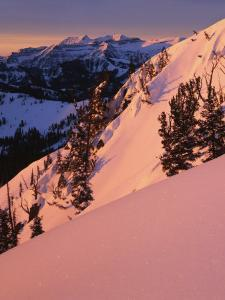 Winter Sunrise, Uinta-Wasatch-Cache National Forest, Utah, USA by Charles Gurche