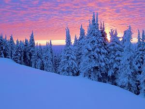 Winter Sunset, Mt Spokane State Park, Washington, USA by Charles Gurche