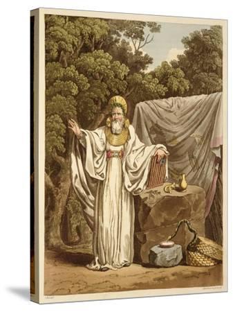 An Arch Druid in His Judicial Habit