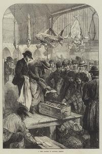 A Fish Auction in Columbia Market by Charles Joseph Staniland