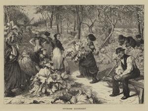 Rhubarb Gatherers by Charles Joseph Staniland