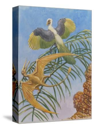 Archaeopteryx and Pterosaurs Were Some of the First Flying Lifeforms