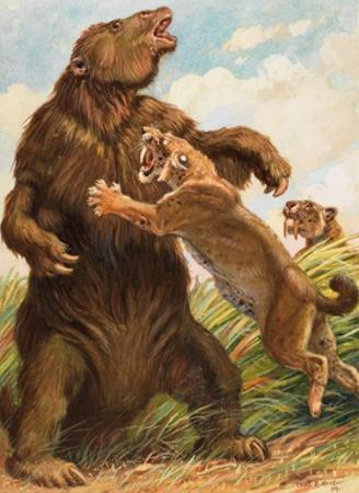 Slow Megatherium Was No Match for the Saber Tooth Tiger
