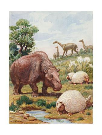 Toxodon, Glyptodon and Macrauchenias Lived in South America