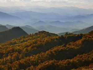Great Smoky Mountains National Park by Charles Krebs