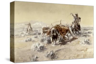 Roping the Longhorns
