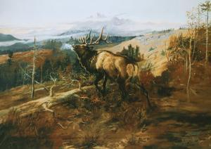 The Elk by Charles Marion Russell