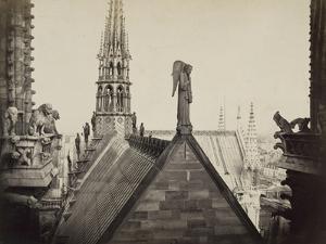 Notre-Dame de Paris, les combles pris de la Galerie des Tours by Charles Marville